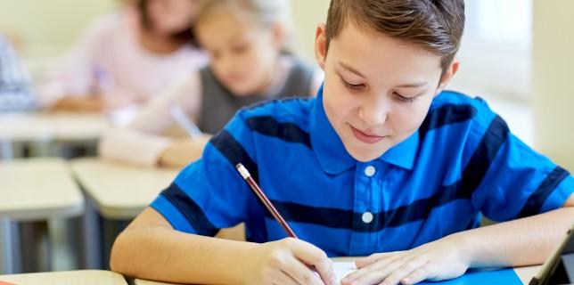 Образование за перфекционисти – изборът на школа зависи от вас