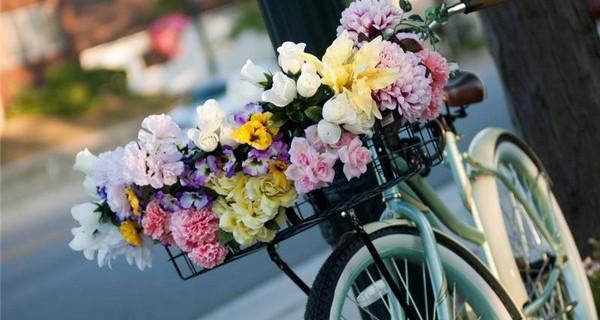 Как да съхраните цветовте за по-дълго
